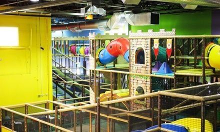 Indoor Play Pass for One, Two, or Three Kids, or Sapphire or Emerald Birthday Party at Playtopia Deals for only C$8 instead of C$14.99