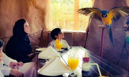 Breakfast with the Birds Experience, Zoo Entry and Tour for Up to Four at Flavours at the Emirates Park Zoo and Resort